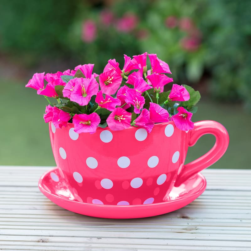 Pink Garden Planters: Giant Teacup & Saucer Planter - Pink