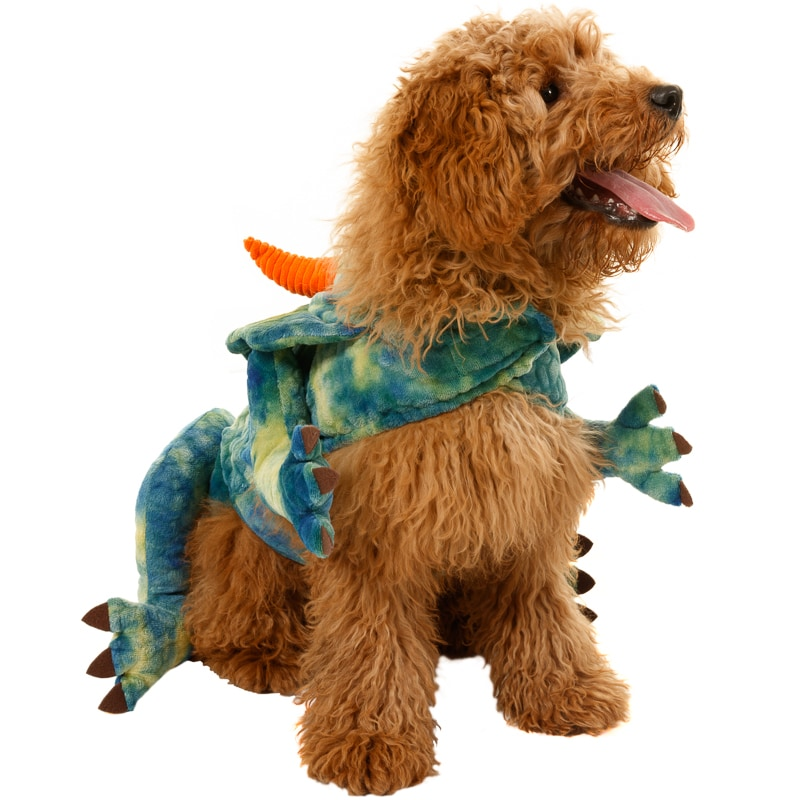 ef79c7b8c7d Dogs Novelty Fancy Dress Costume - Dinosaur