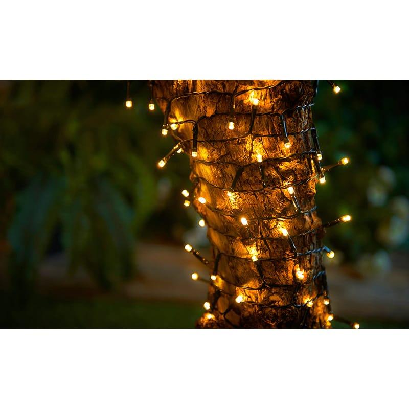 Outside Lights At B M: Eveready LED String Lights 60pk - Warm White