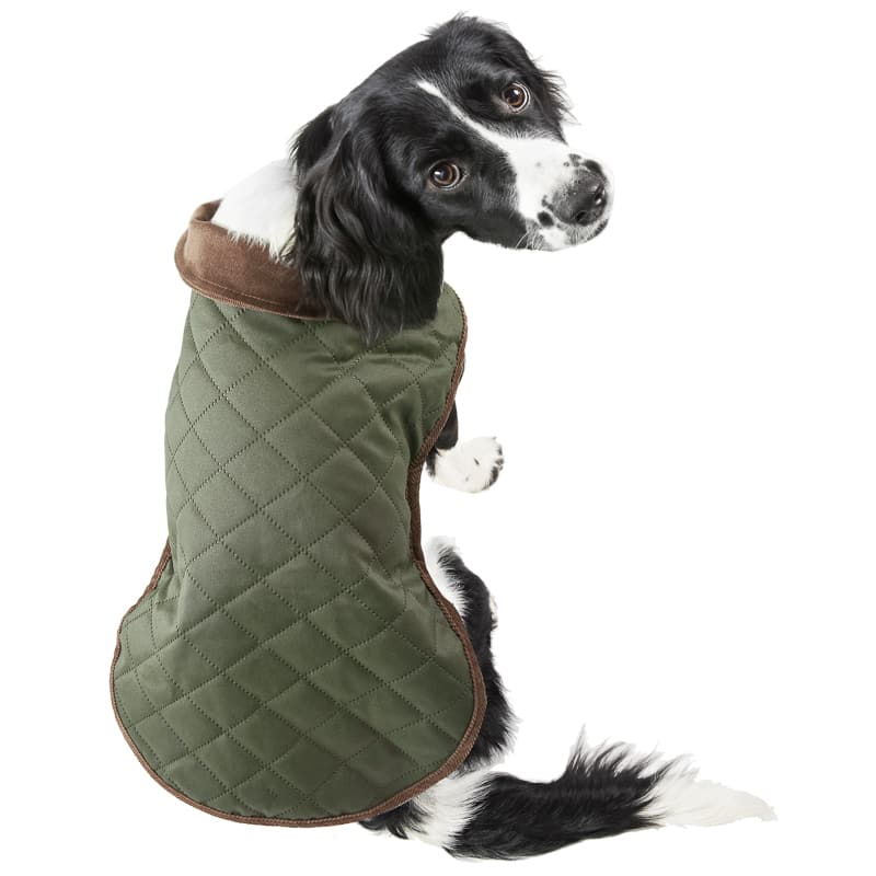 Quilted Dog Coat - X-Small & Small - Green