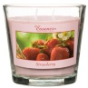 297513-Large-Wax-Jar-Candle-strawberry1