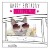301168-glamour-puss-greetings-card
