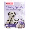 302532-calming-spot-on-dogs