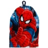 310321-Boys-Marvel-Spider-Man-Wash-Mitt
