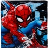 311171-marvel-spiderman-face-cloth