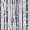 312108-Frosted-wood-Silver-Wallpaper