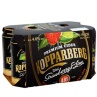 320839-Koppaberg-Strawberry-Lime-6-x-330ml