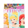 322201-disney-princess-poncho