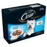 324864-Cesar-Deliciously-Fresh-Senior-Dog-Pouches
