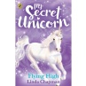 339508-my-secret-unicorn-book-flying-high