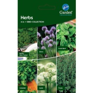 Vegetable Seeds - Herbs