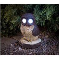 Bright Eyed Barn Owl With Solar Light