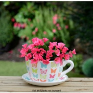 Pattern Dot Teacup And Saucer Planter
