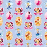 Character Wrapping Paper - Princess - 3m