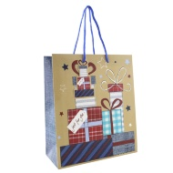 Everyday Gift Bags Medium 3pk - Presents