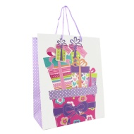 Everyday Gift Bags Large 2pk - Presents & Bunting