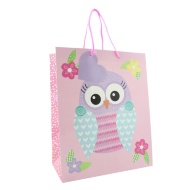 Kids Gift Bags Large 2pk - Owls