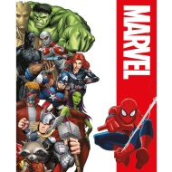 Marvel Slipcase Stories