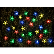 100 Solar Nature Lights - Flower