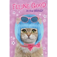 Feline Good on your Birthday - Birthday Card