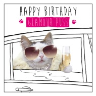 Glamour Puss Birthday Card
