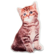 Animal Shaped Photographic Cushion - Cat