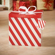 Giant Gift Box - Red Stripe