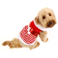 Mrs Claus Christmas Dog Costume