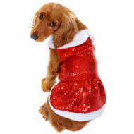 Christmas Dog Outfit - Small - Large - Mrs Claus