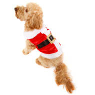 Mr Claus Christmas Dog Costume