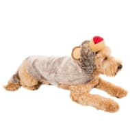 Novelty Dog Outfit