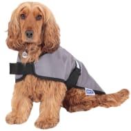 RSPCA Reflective Dog Coat