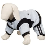 Doggy Tracksuit - Grey
