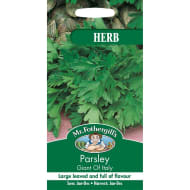 Parsley Giant of Italy Herb Seeds