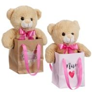 Mother's Day Bear in a Bag