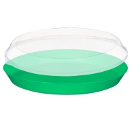 Food Tray with Clear Lid - Green