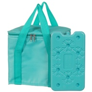 Cool Bag with Ice Pack - Green
