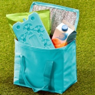 Cooler Bag with Ice Pack - Green