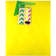 Neon Yellow Gift Bag