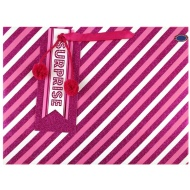 Luxury Gift Bag - Pink Stripes