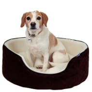 RSPCA Quilted Oval Foam Bed - Cream