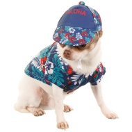 Summer Dog Hats - Aloha