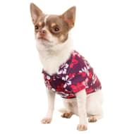 Hawaiian Dog Shirt - Purple