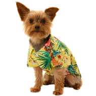 Hawaiian Dog Shirt - Yellow