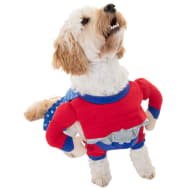 Dogs Superhero Costume - Super Dog