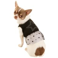 Doggy Dress - Star