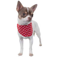 Doggy Bandana - Polka Dots