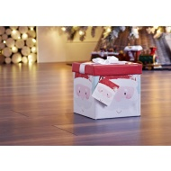 Medium Christmas Gift Box with Bow & Tag - Santa Head
