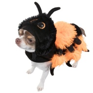 Dogs Halloween Costume - X Small-Small - Spider
