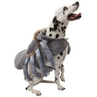 Dogs Halloween Costume - Medium/Large/X-Large - Spider
